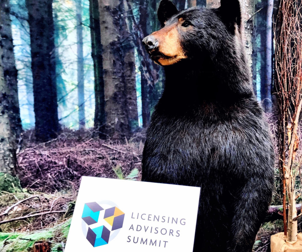 Black bear in woods with sign in foreground for Licensing Advisors Summit