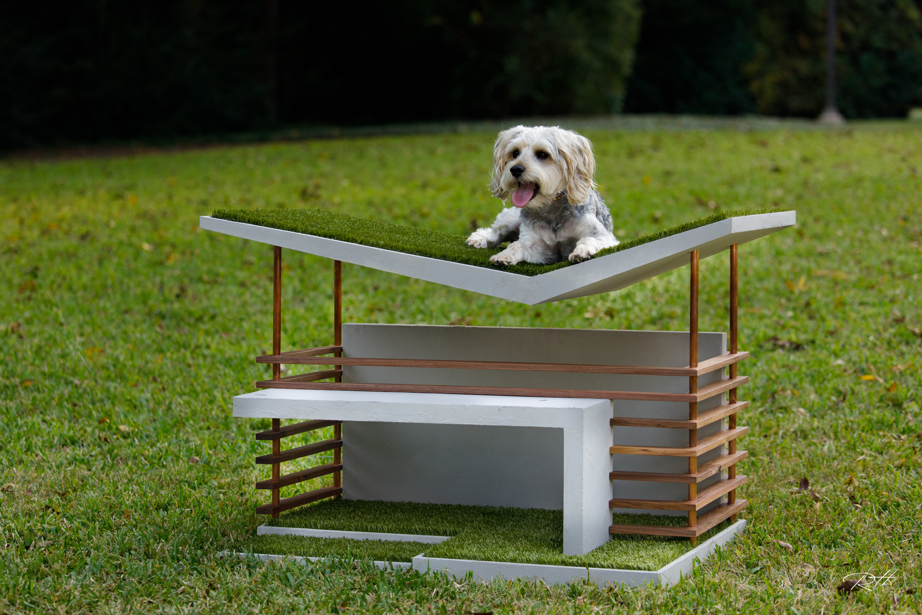 A dog with a doghouse designed for the Bark + Build design competition by members of the Dallas office